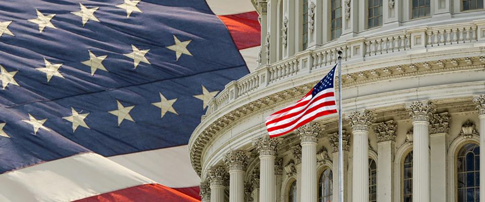 44906288_capitol_flag